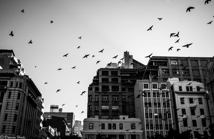 Pics: Duncan Hoole Photography