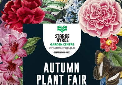 Autumn Plant Fair this Weekend