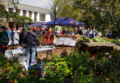 Camphill Village Country Market