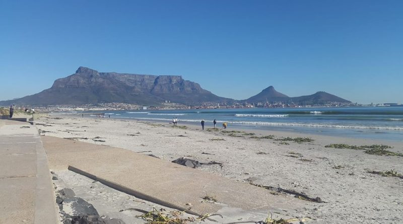 Womans Day Beach Clean Up